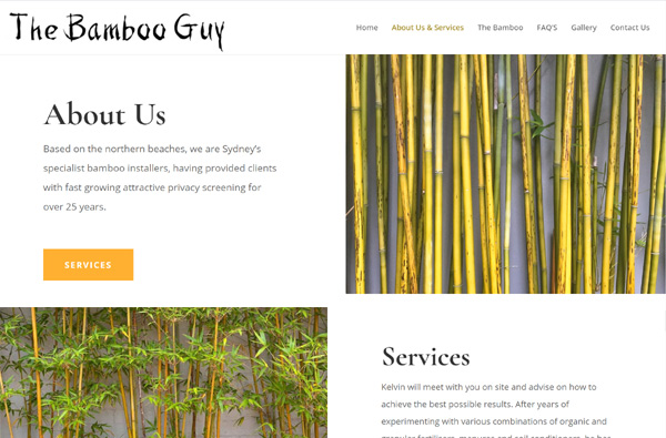 The Bamboo Guy